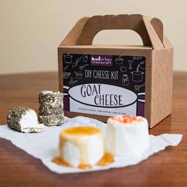 Cheese Making Kits: 7 Smelly Ways to DIY Happiness