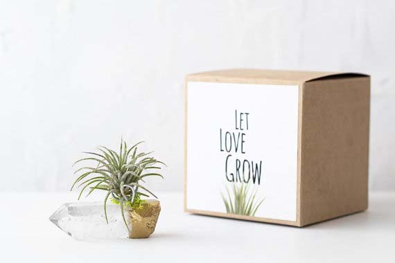 Long Distance Relationship Gifts - Let Love Grow