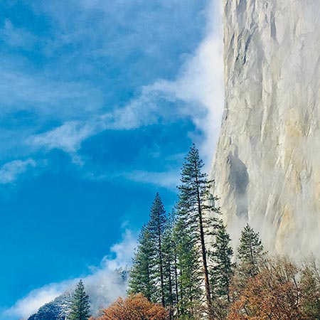 Yosemite Gifts: 19 Ways to Bring the National Park Home